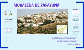 MORALEDA DE ZAFAYONA