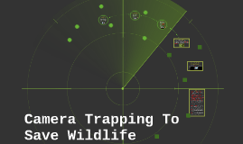 Camera Trapping Wildlife