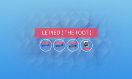 LE PIED ( THE FOOT )
