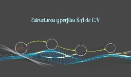 Estructuras y perfiles S.A de C.V
