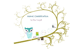 Copy of Copy of Animal Classification