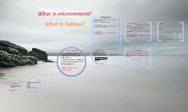 Habitat year 7