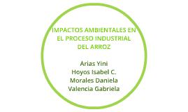 IMPACTOS AMBIENTALES EN EL PROCESO INDUSTRIAL DEL ARROZ