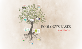 ECOLOGY'S BASES