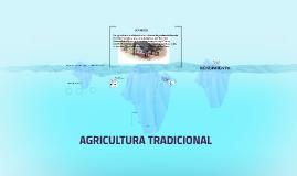 AGRICULTURA TRADICIONAL