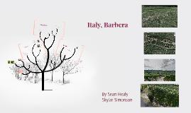 Italy, Barbera