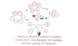 Copy of Genetically Modified Organisms (GMO's)