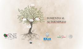 FOMENTO AL AUTOEMPLEO