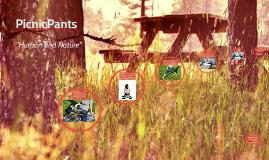 PicnicPants