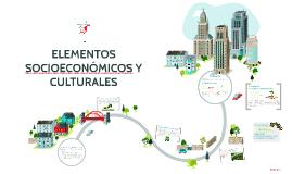 ELEMENTOS SOCIOECONÓMICOS Y CULTURALES