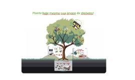 Plante hoje mesmo sua árvore de dinheiro!