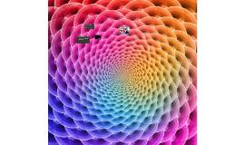 LSD/Dragnet Presentation