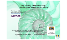 Big History and Biomimicry: Learning to Co-evolve with Nature