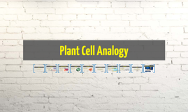 Plant Cell Analogy
