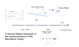 A Human Rights Approach to the Implementation of the Marrake