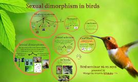 Bird Seminar- Sexual Dimorphism