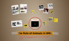 The Role of Animals in WW1