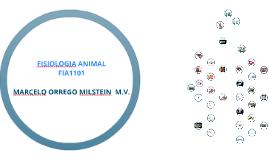 FISIOLOGIA ANIMAL SIST. DIGESTIVO