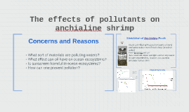 The Effects Of Pollutants On Anchialine .