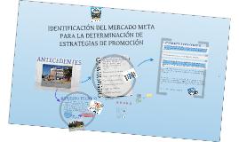 Copy of IDENTIFICACIÓN DEL MERCADO META PARA LA DETERMINACIÓN DE ESTRATEGIAS DE PROMOCIÓN