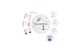 Bacteria & Viruses Notes
