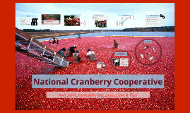 national cranberry cooperative summary National cranberry cooperative case study essay examples national cranberry is a cooperative of berry growers around north america that share common production facilities and for the last several years have been experiencing capacity bottlenecks among other issues.