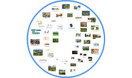 Agro empresarial y agroindustria