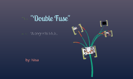 """Double Fuse"""