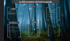 La deforestation de foret tropicale