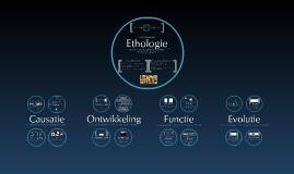 Copy of Diergedrag & Ecologie: Deel 1 - Diergedrag