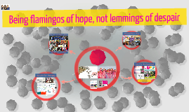 Being flamingos of hope, not lemmings of despair
