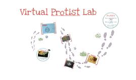 Virtual Protist Lab