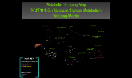 Metabolic Pathways By: Brittany Martin
