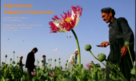 Afghanistan: Poppies to Paychecks