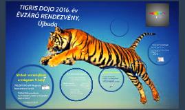 Tigris Dojo évzáró 2015. másolata