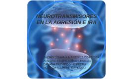NEUROTRASMISORES EN LA AGRESION E IRA