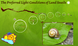 Prefered Light Conditions of Land Snails
