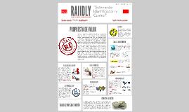 """RAIIDLY """"Sistema de Identificación y Control"""""""