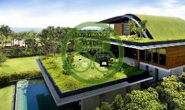 Los tejados verdes