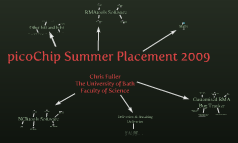 picoChip Summer Placement 2009