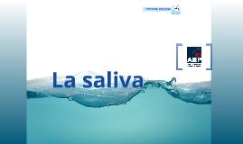 Copy of La saliva