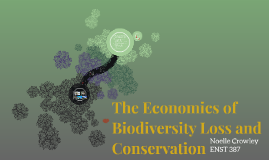 The Economics of Biodiversity Loss and Conservation