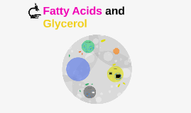 Fatty Acids and Glycerol
