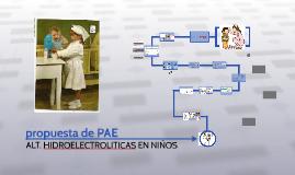 propuesta de PAE