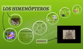 LOS HIMENÓPTEROS