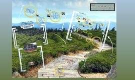 Copy of La educación ambiental y su impacto  en proyectos ambientales