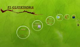 Copy of Glioxisoma