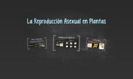La Reproducción Asexual en Plantas
