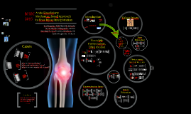 Knee Injuries. Mechanisims and Patterns of Injury