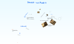 Backlot - rush Plant A